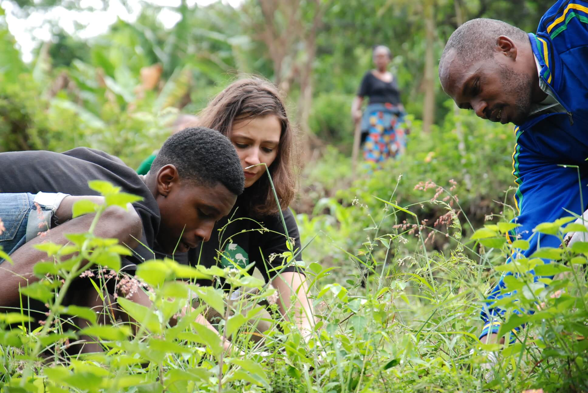 Duluti Green Foundation Tanzania plant preservation