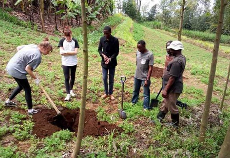 Duluti Green Foundation environmental volunteering